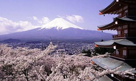 Пять идей для тех, кто едет в Японию