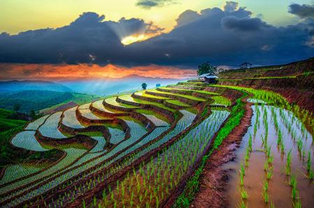 Путевки и туры во Вьетнам