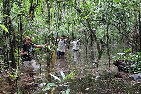 Поездка в древние джунгли Амазонки откроет вам новый мир